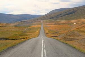 Ein Road Trip vom Feinsten mit Bravebird