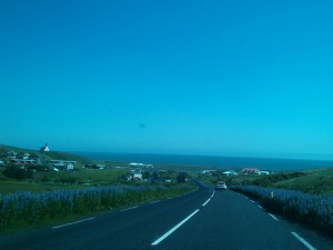 Auf dem Weg nach Vik