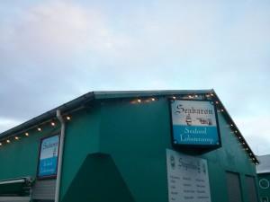 Sægreifinn - Die beste Hummersuppe in Reykjavík