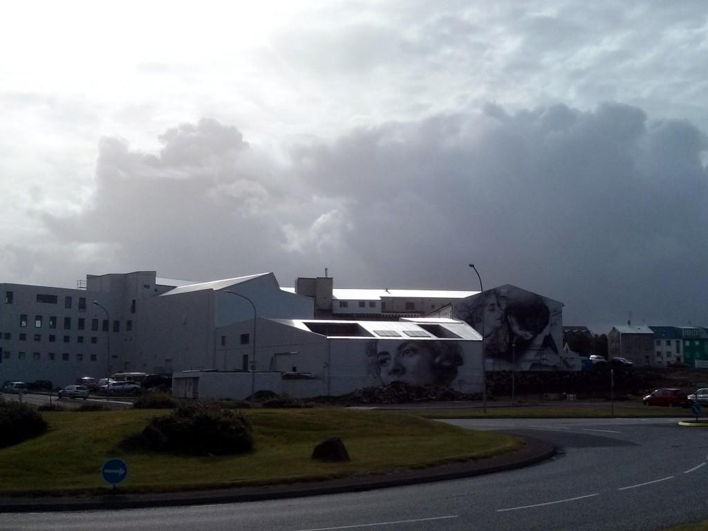 Eine Woche in Island reicht um die schönen Ecken des Hafen in Reykjavik zu besuchen