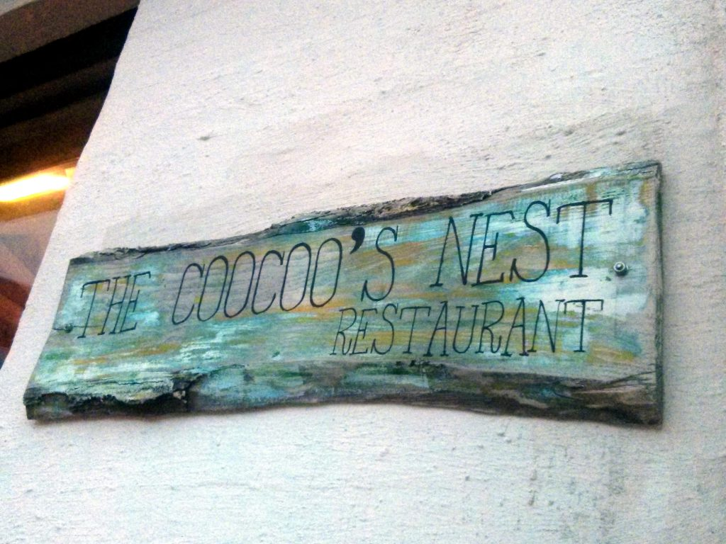 Coocoo's nest in Reykjavík