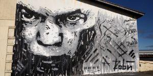Streetart rund um das Freezer Hostel auf Snæfellsnes